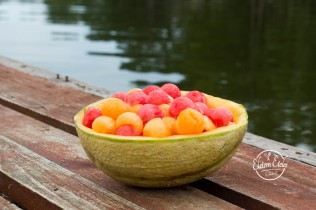 Dinnye saláta nyár (1)